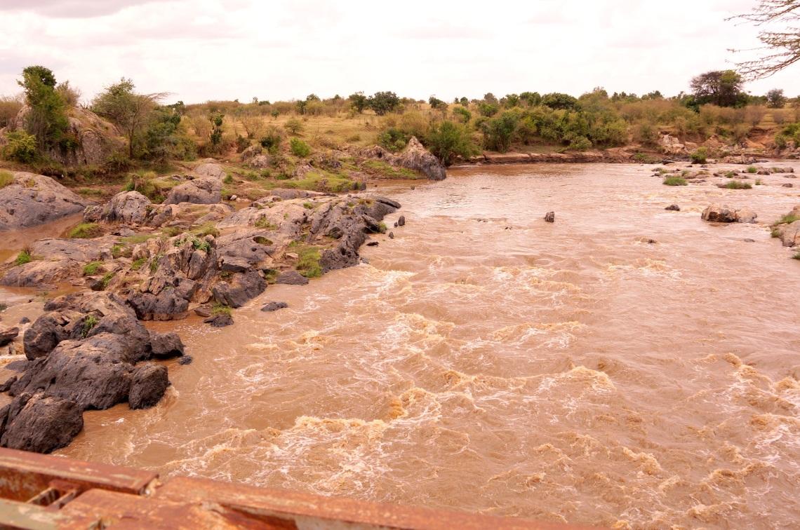 通常看牛羚渡河的 Mara river, 可惜今天沒有